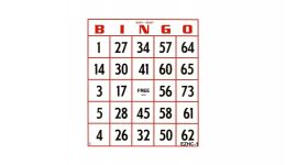 50 pack reusable bingo cards